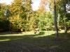 skanderborg-dyrehave-10.jpg